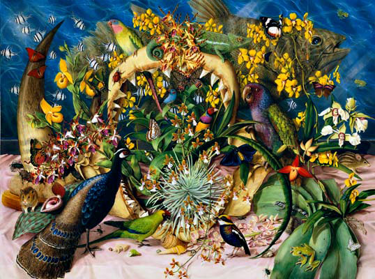 Isabella Kirkland, Collection, 2007, from Taxa, #4 of 6 ikf0701