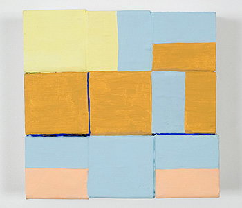 Nancy Shaver, Assortment: yellow, ochre, blue and pink, 2006 nsf0611