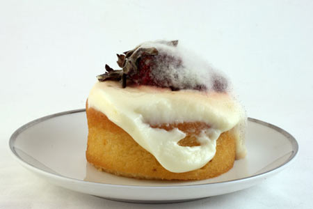 JEANNE DUNNING:  Shortcake with Custard and Strawberry, 2009