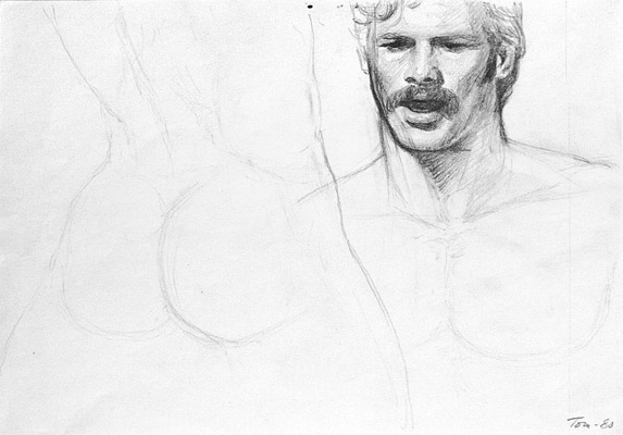 Tom of Finland, Untitled (preliminary drawing), 1980 toff8001